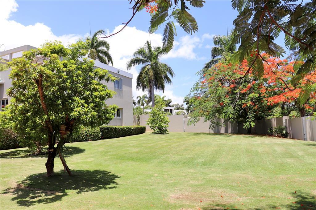 Dorado Estates Dorado Estates Property Photo 25
