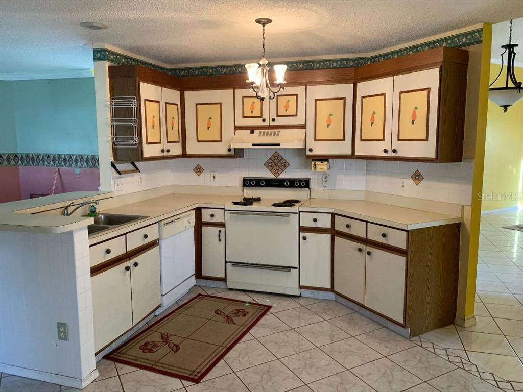 207 Olivewood Court Property Photo 9