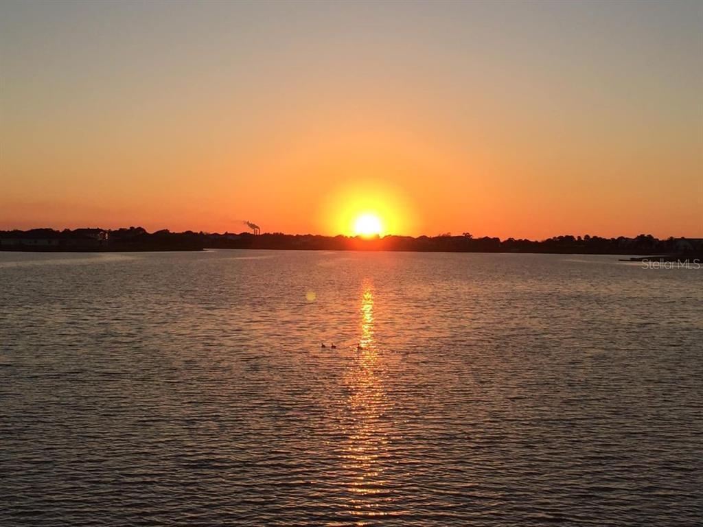 11627 Lake Lucaya Drive Property Photo 1