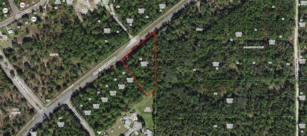 6545 N Lecanto Highway Property Photo
