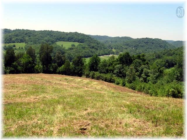4- Davidson County (cumberland River W To Clarksville) Real Estate Listings Main Image