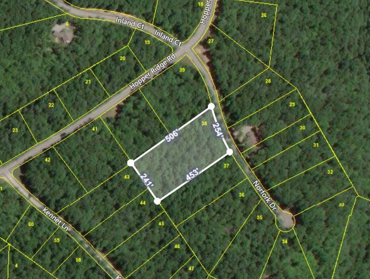38 Norfolk Dr Property Photo
