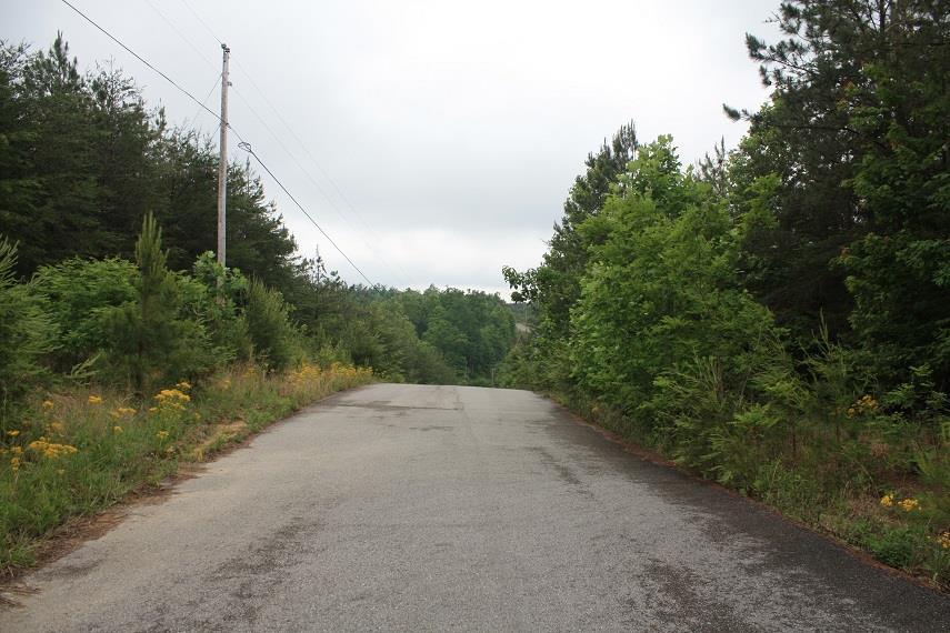 0 Baker Mountain Road Property Photo