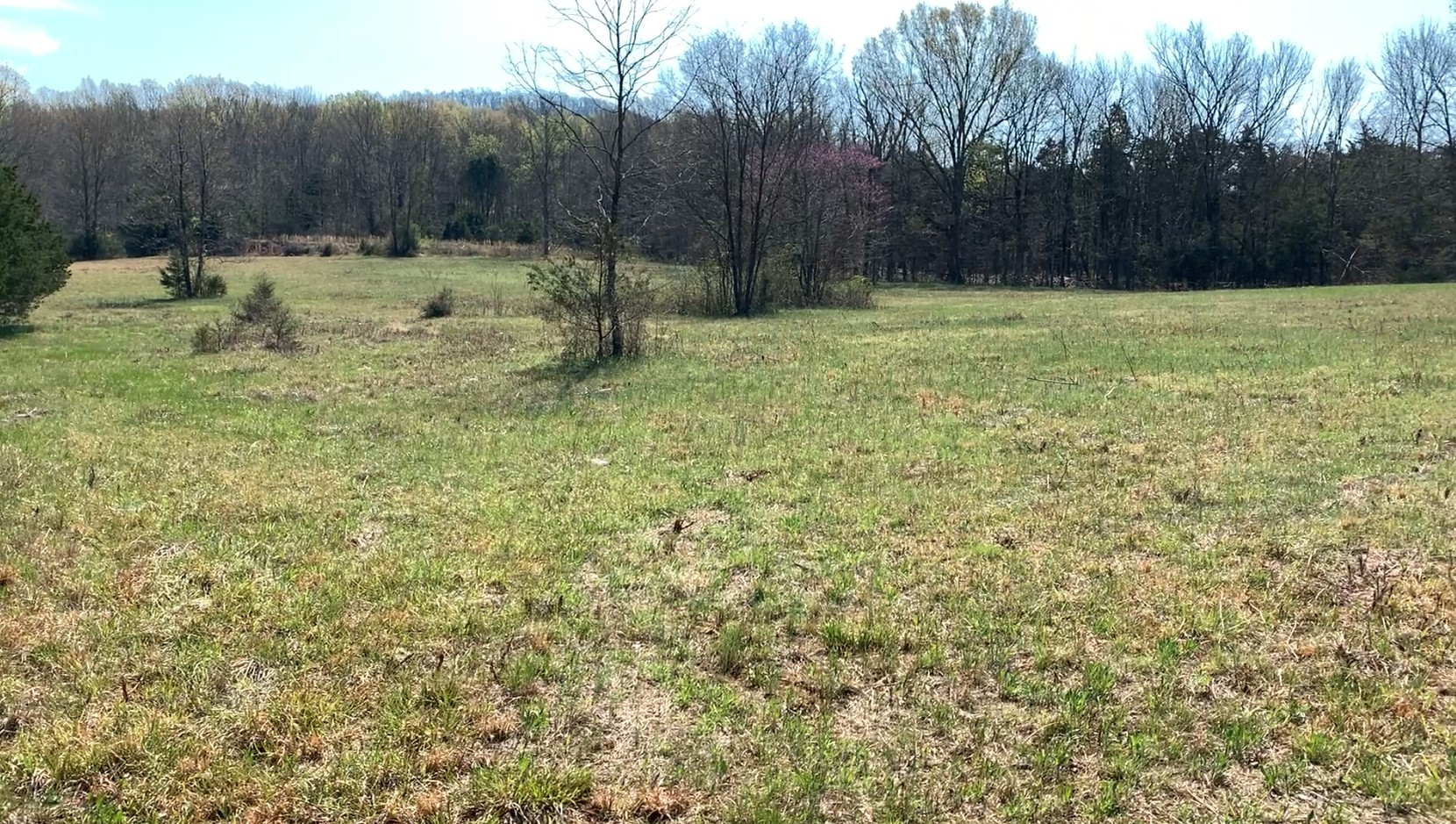 11225 Manchester Pike Property Photo 3