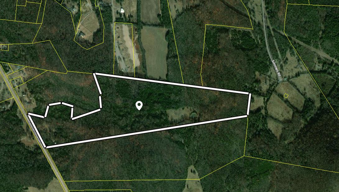 11225 Manchester Pike Property Photo 4