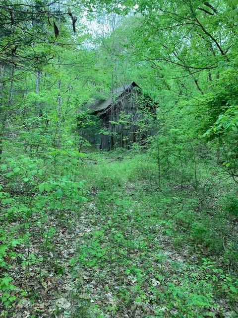 181 Batson Rd Property Photo