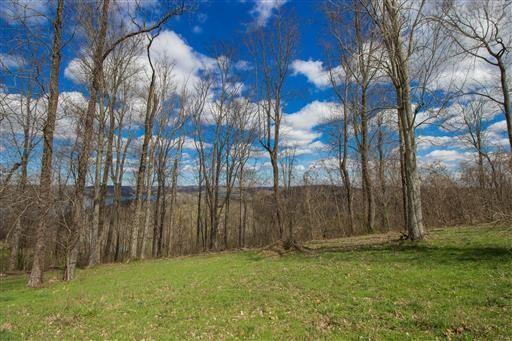 88 Davidson Rd Property Photo