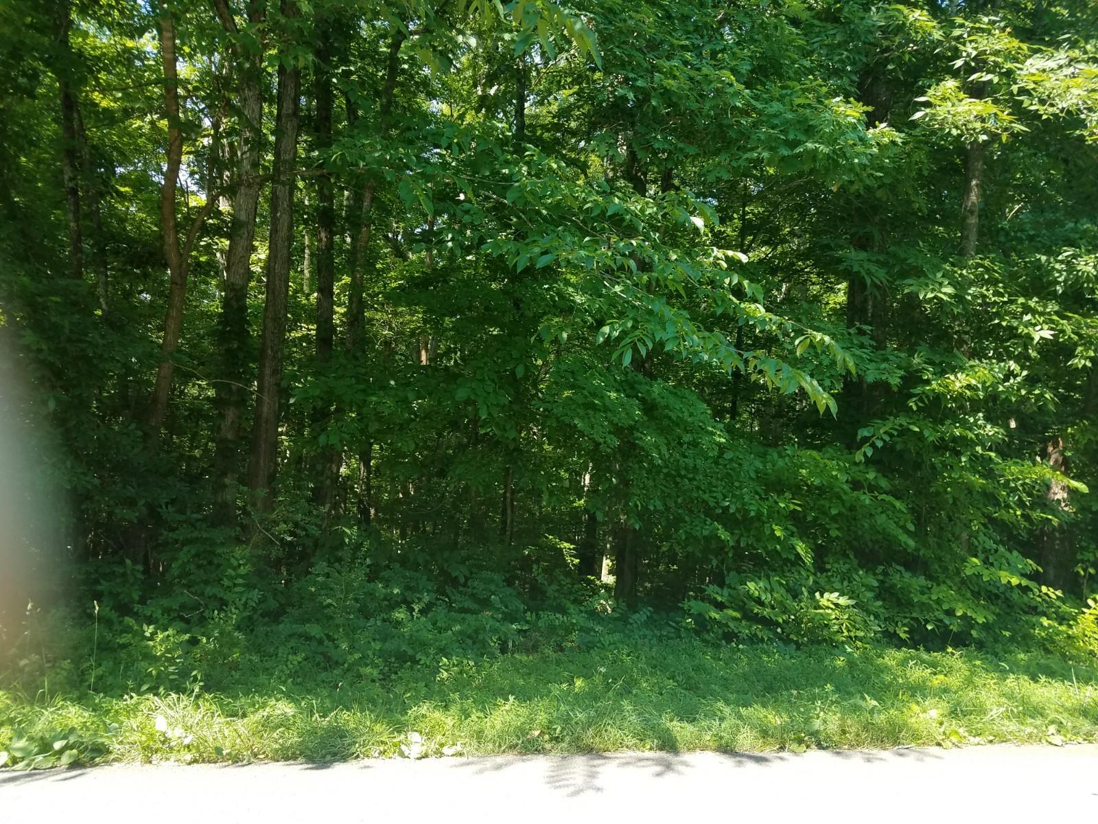 10615 Highway 7 Property Photo