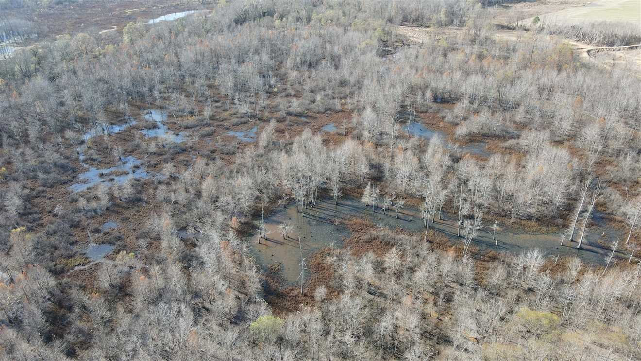 0 Bakers Chapel S Of Rd Tn Property Photo