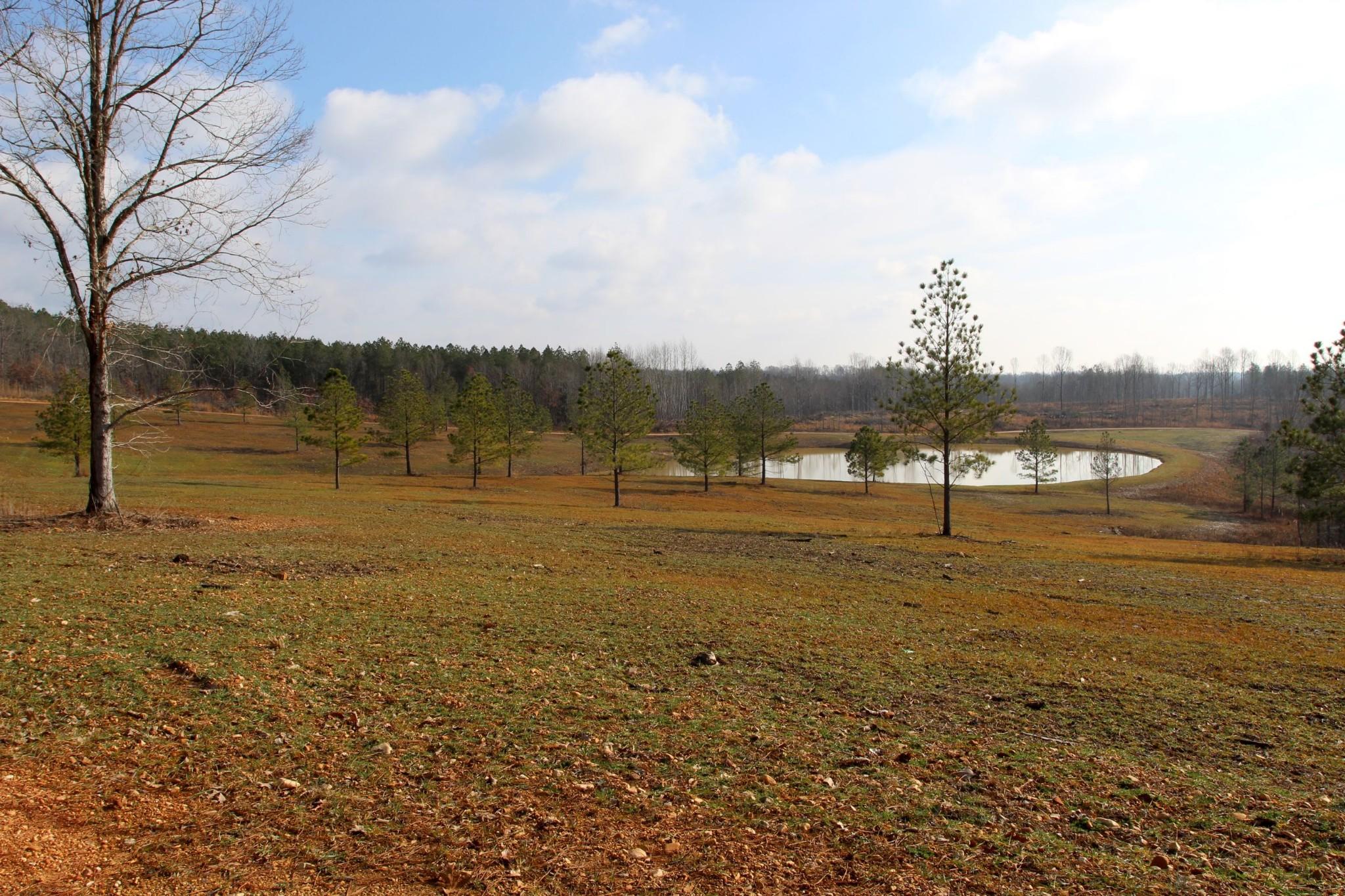 698 7 Mile Ridge Rd. Property Photo 2