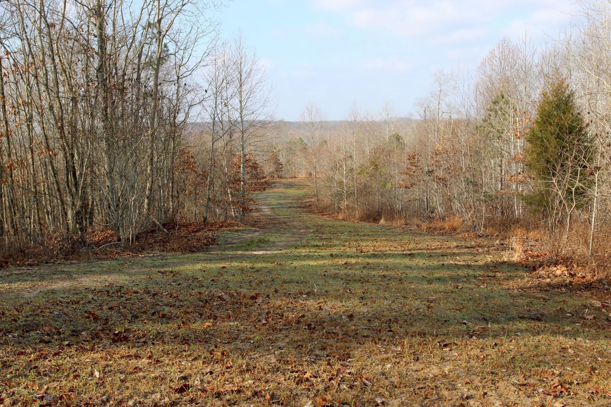 698 7 Mile Ridge Rd. Property Photo 8