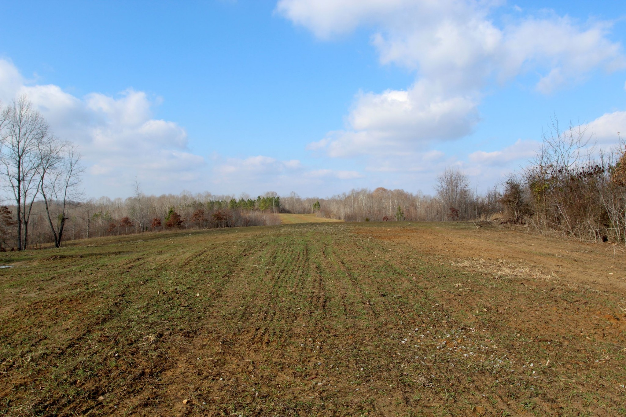 698 7 Mile Ridge Rd. Property Photo 27