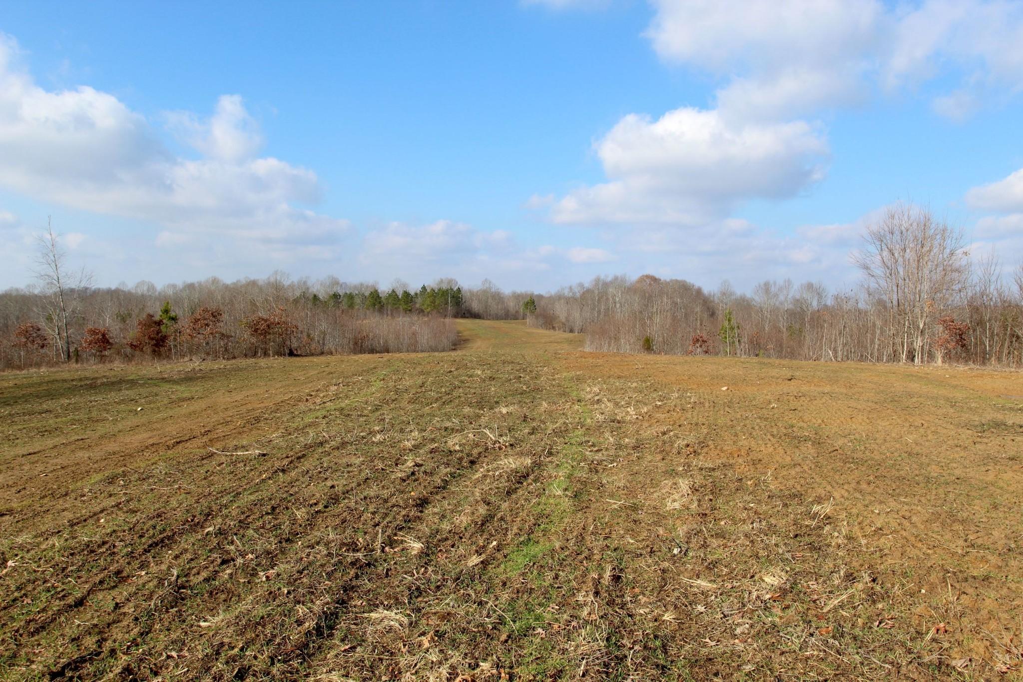 698 7 Mile Ridge Rd. Property Photo 29