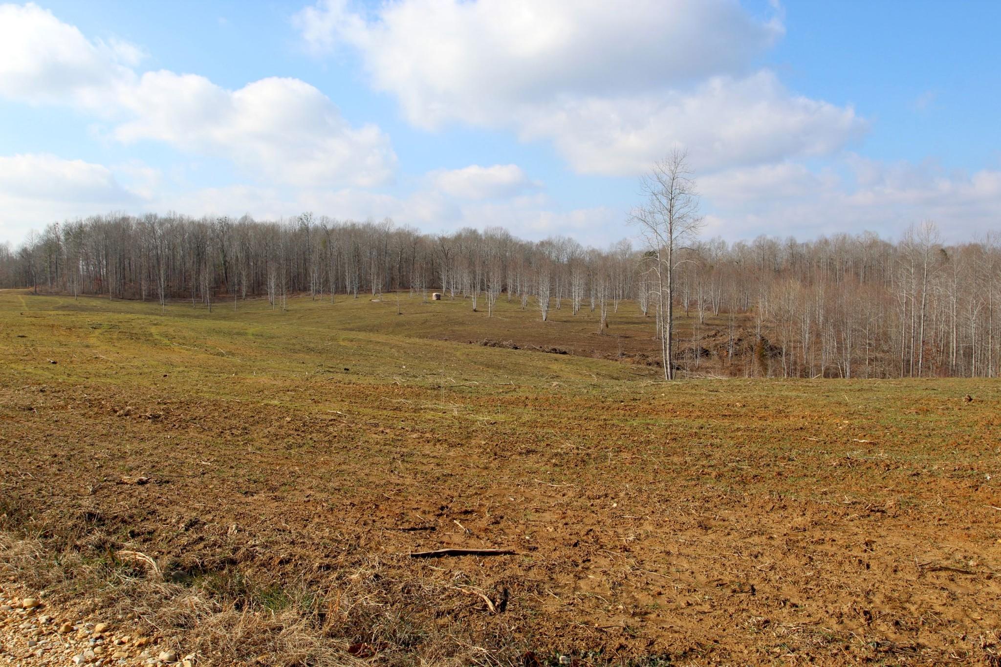 698 7 Mile Ridge Rd. Property Photo 33