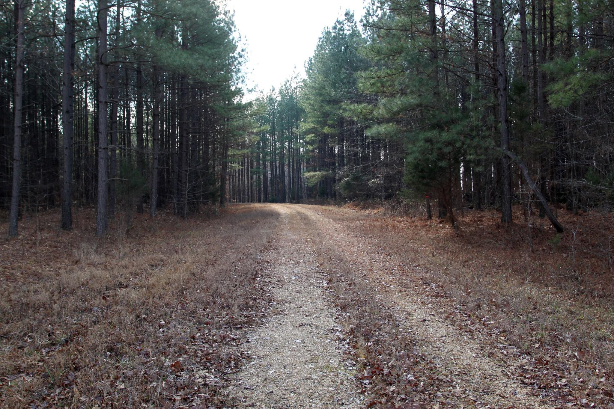 698 7 Mile Ridge Rd. Property Photo 37