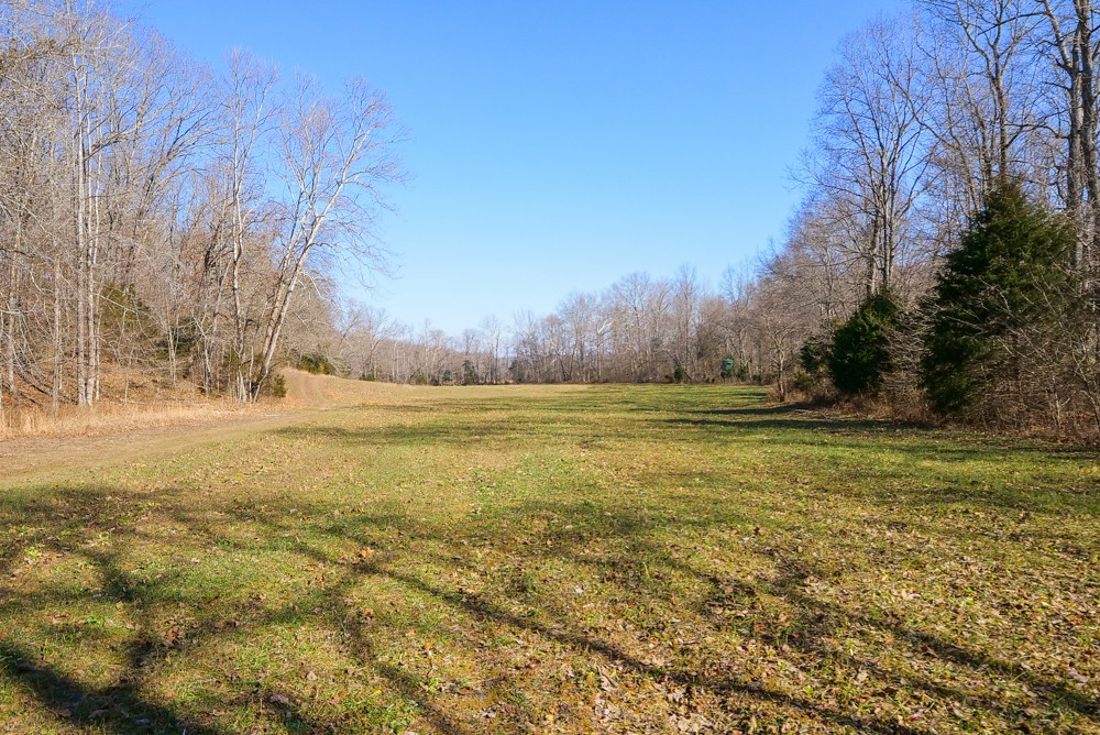 1687 Gilliam Hollow Rd Property Photo 41