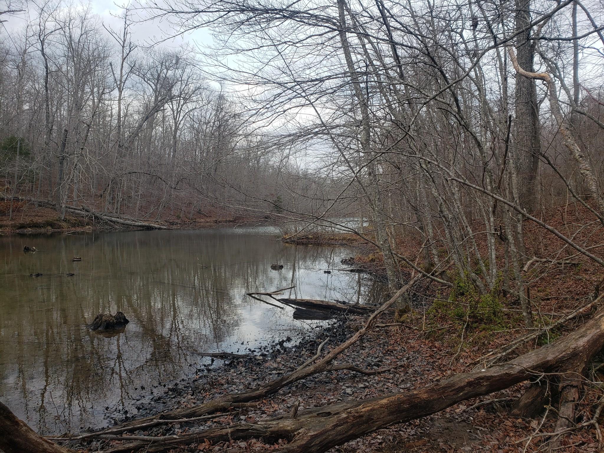 0 Cumberland View Drive Property Photo