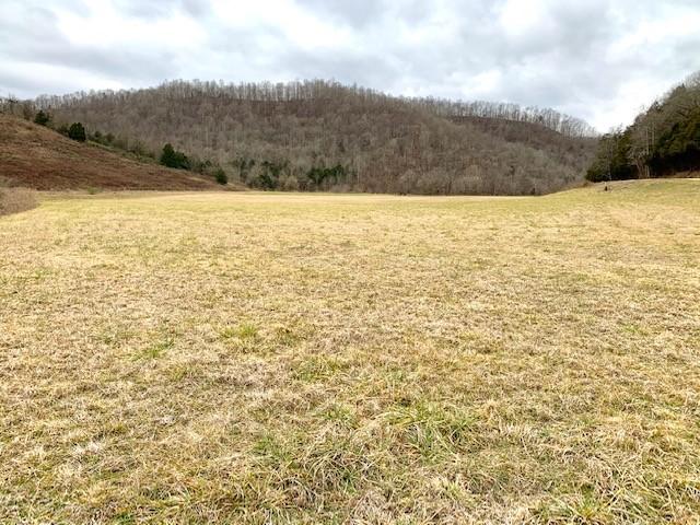 0 Dry Mill Creek Road Property Photo