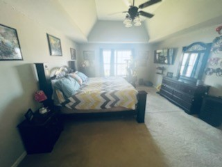 810 Red Hollow Dr Property Photo 15