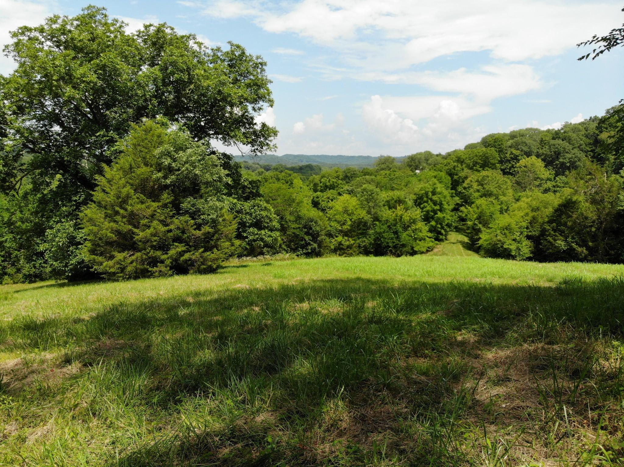 0 Parker Branch Property Photo