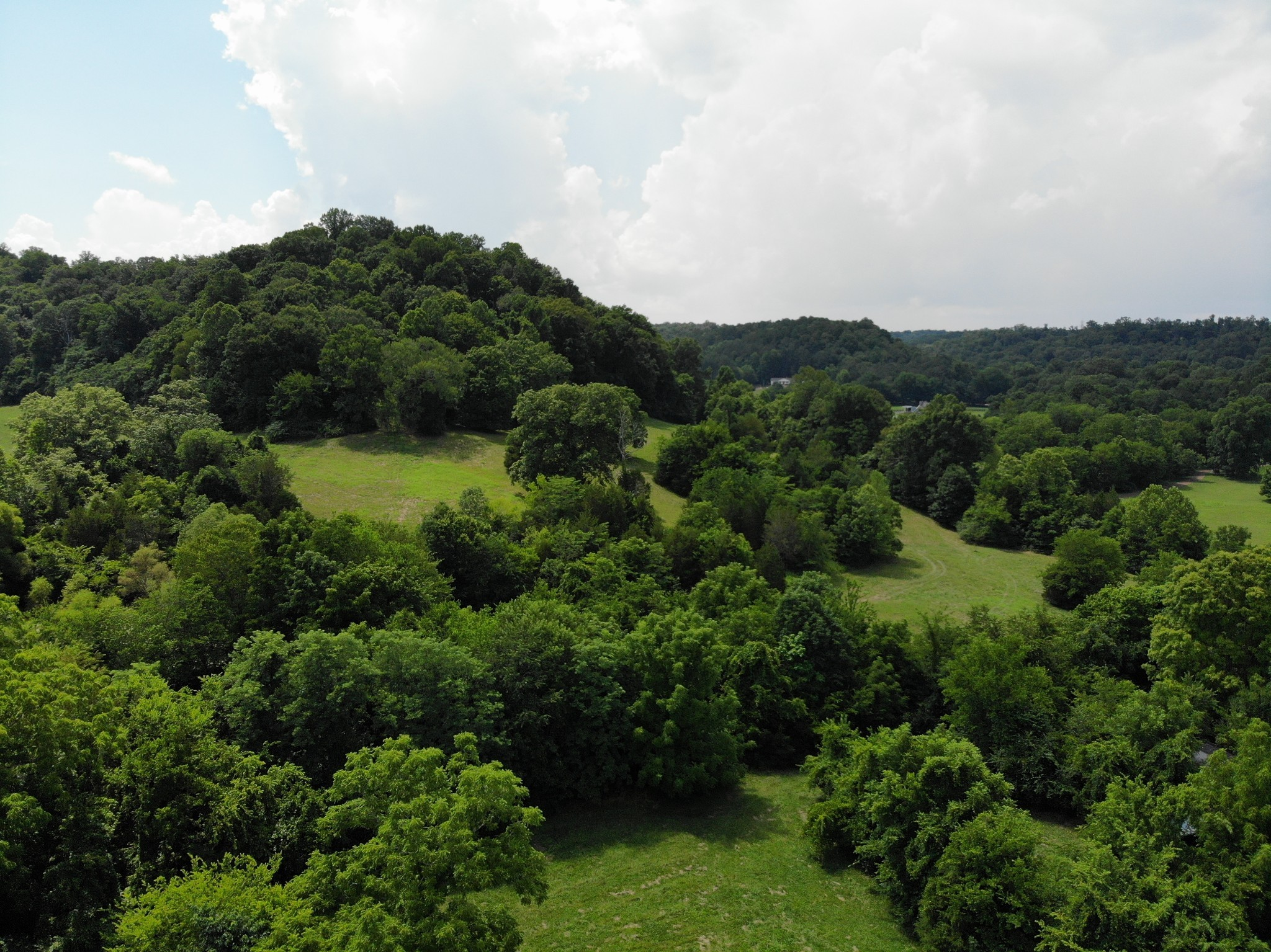 0 Parker Branch Property Photo 3
