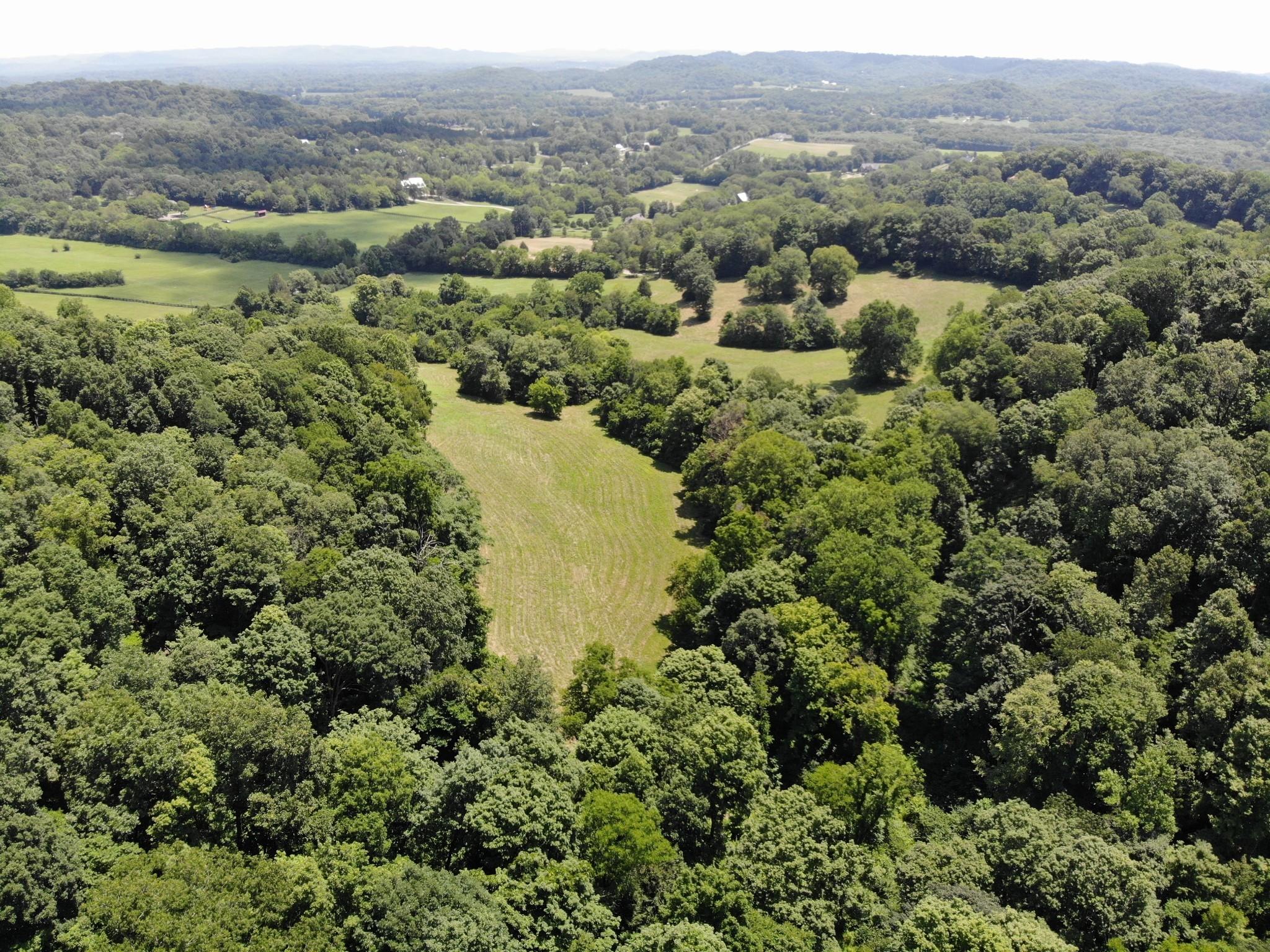 0 Parker Branch Property Photo 5