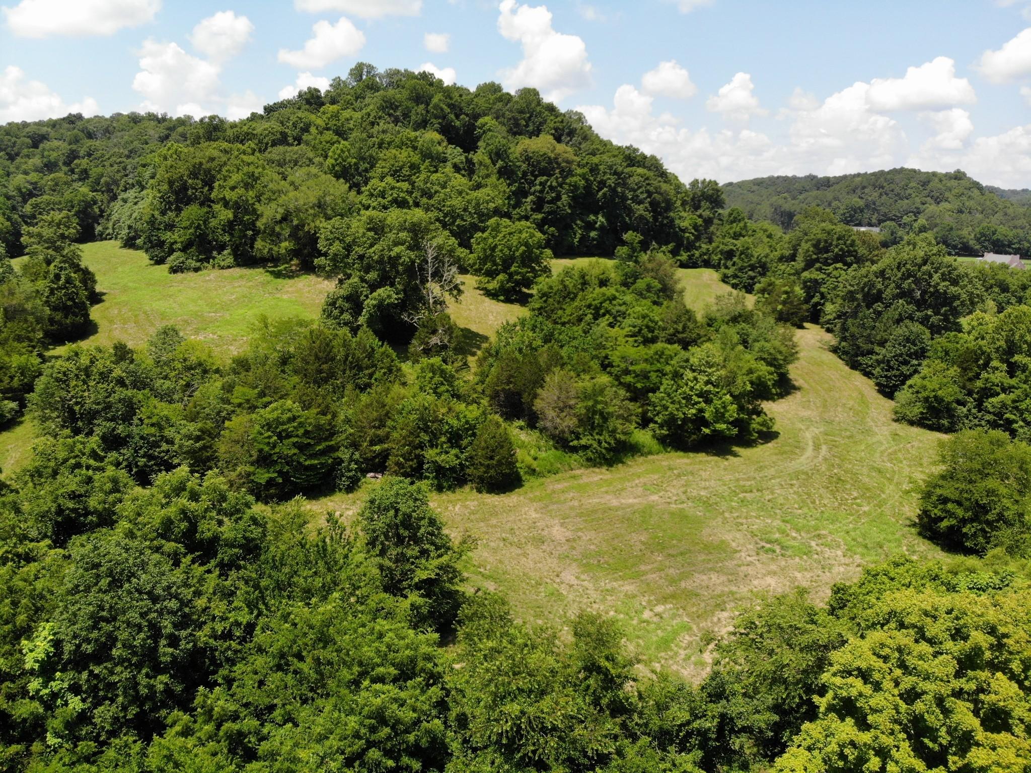 0 Parker Branch Property Photo 7