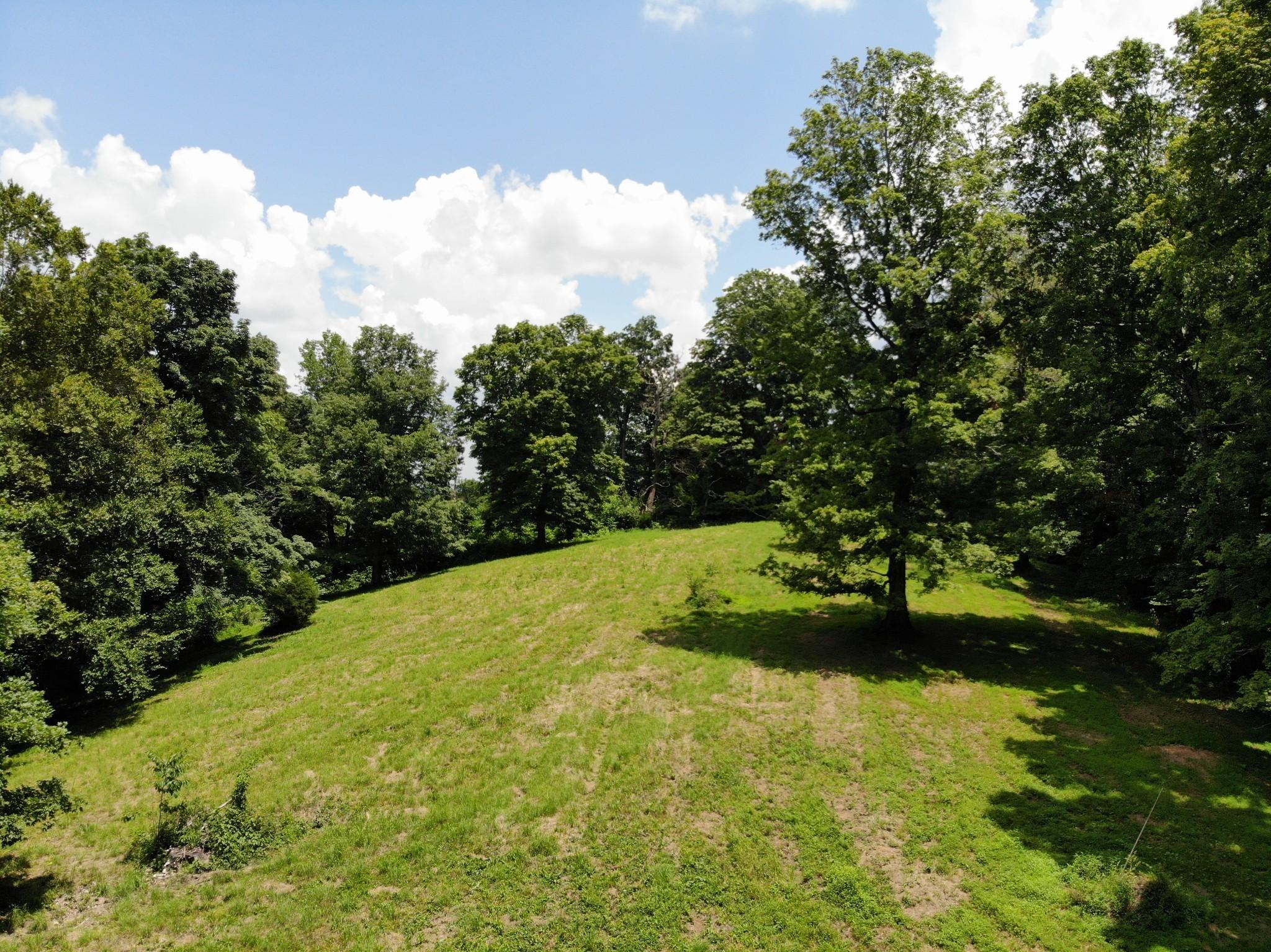 0 Parker Branch Property Photo 8