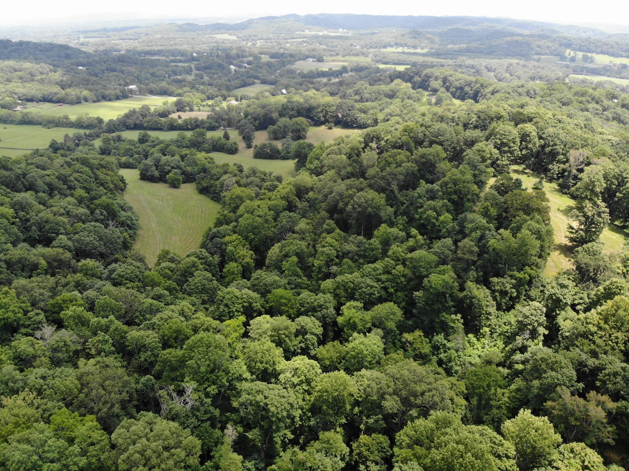 0 Parker Branch Property Photo 9