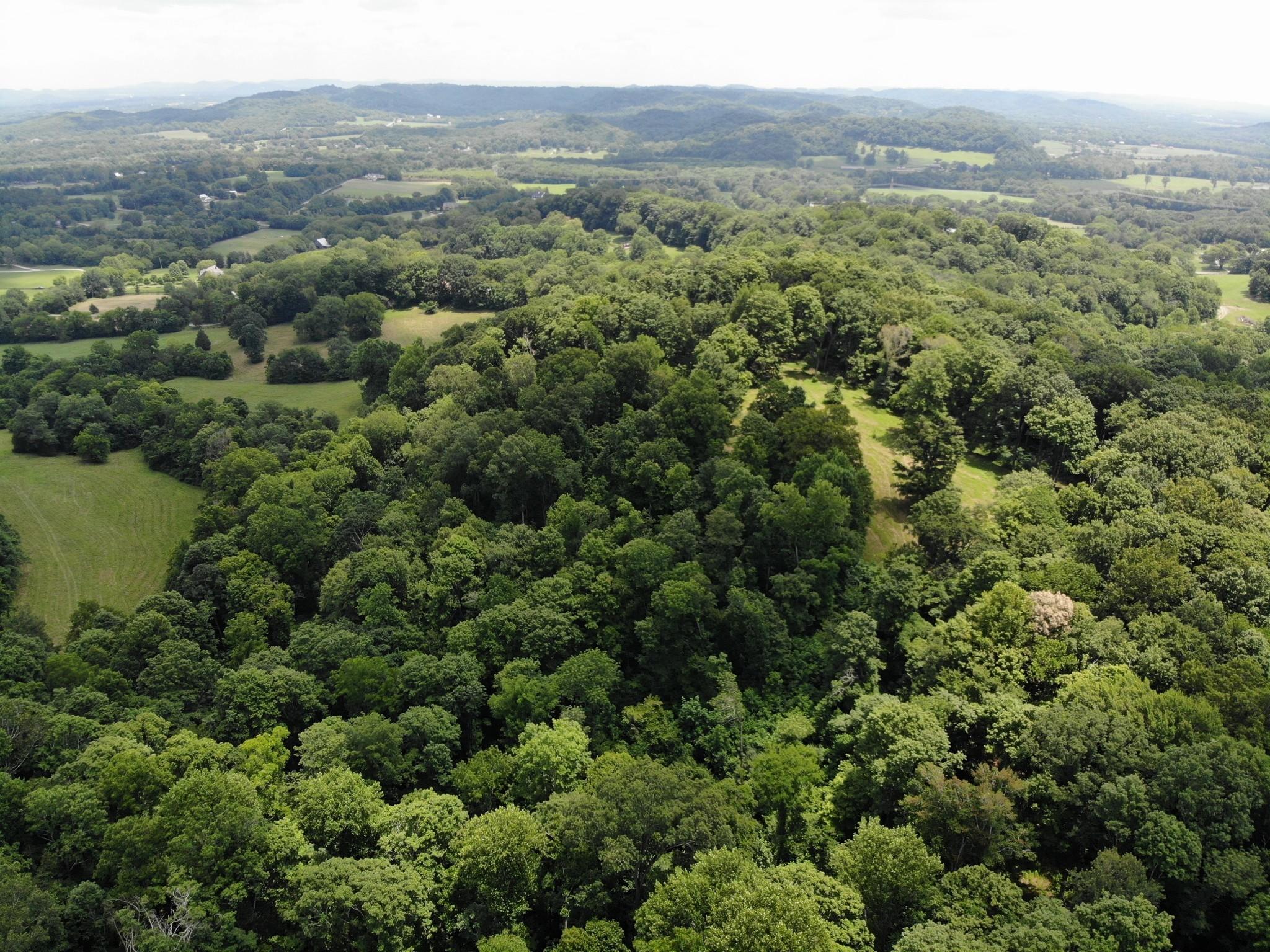 0 Parker Branch Property Photo 10