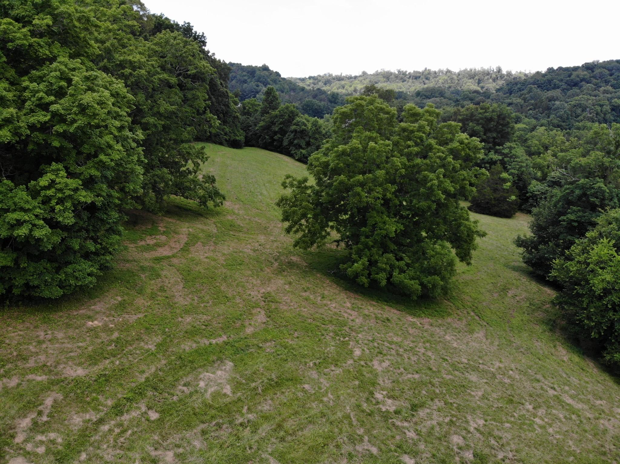 0 Parker Branch Property Photo 11