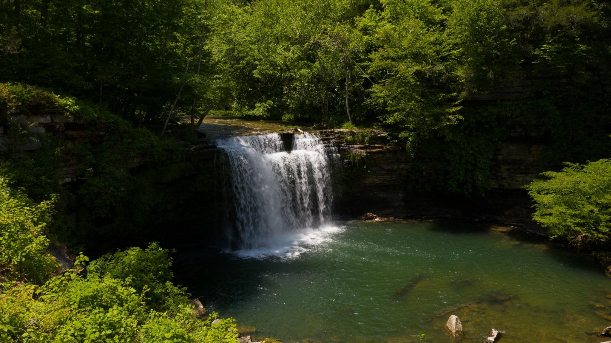 1050 Pine Creek Falls Rd Property Photo 11