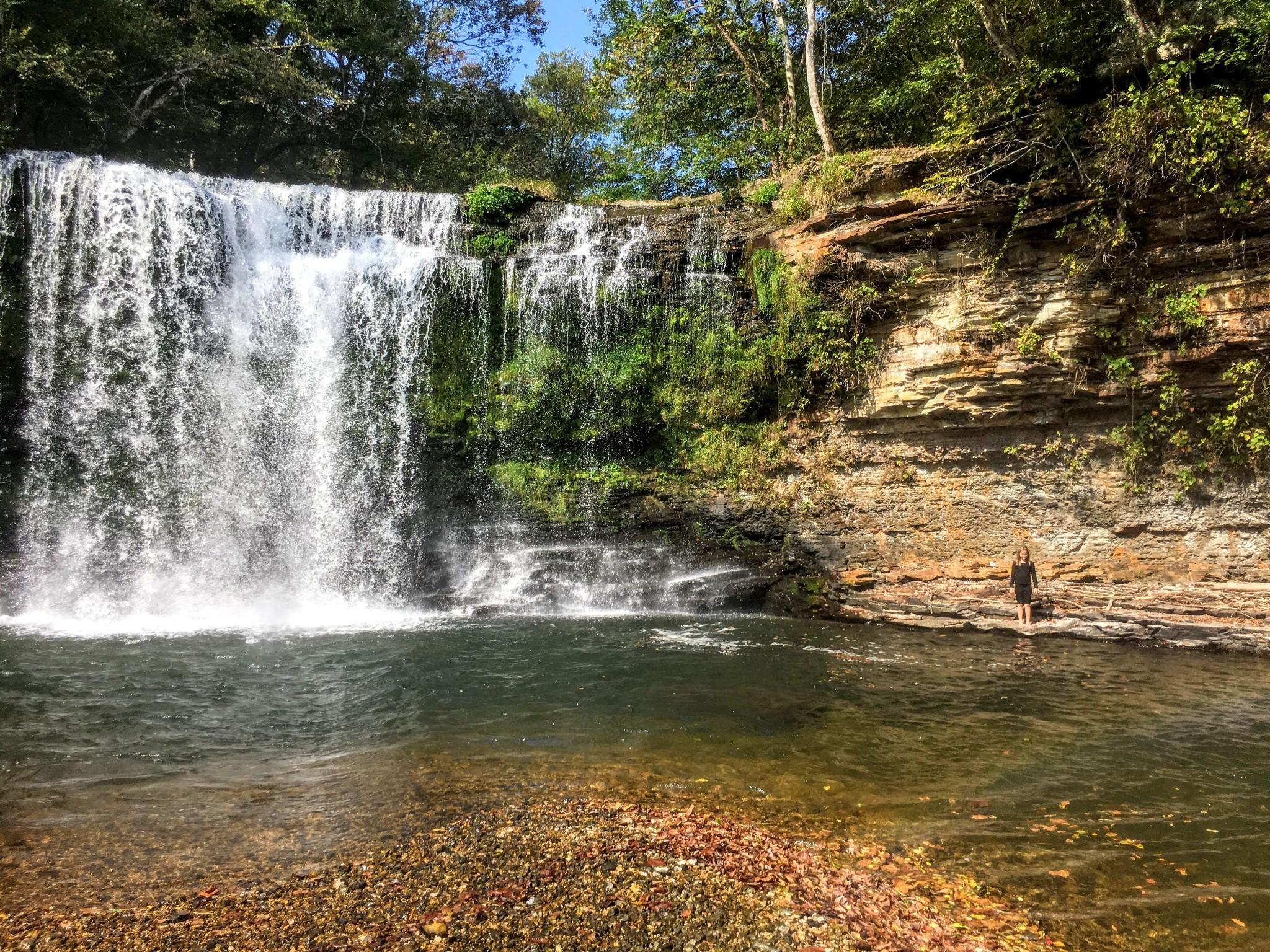 1050 Pine Creek Falls Rd Property Photo 12