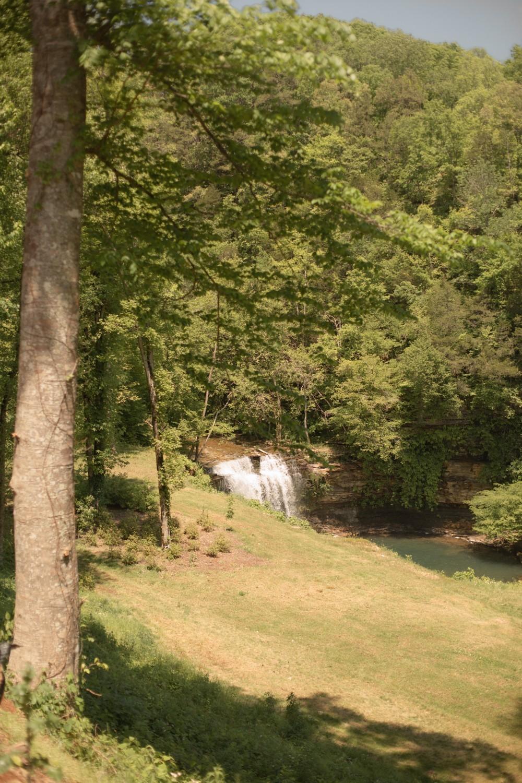 1050 Pine Creek Falls Rd Property Photo 35
