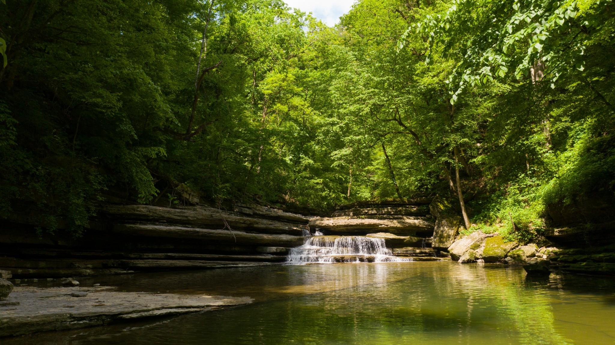 1050 Pine Creek Falls Rd Property Photo 44