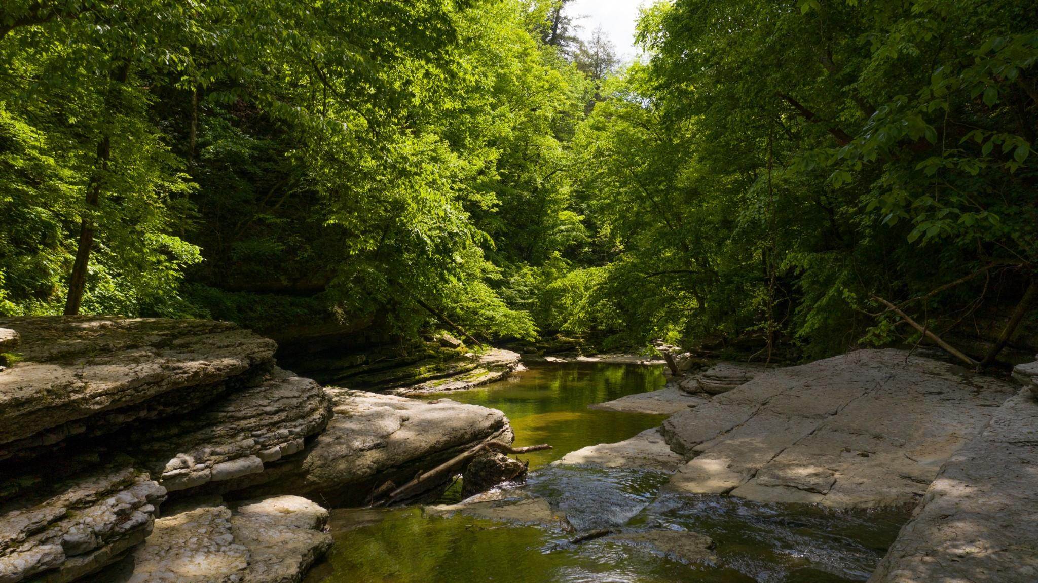 1050 Pine Creek Falls Rd Property Photo 46