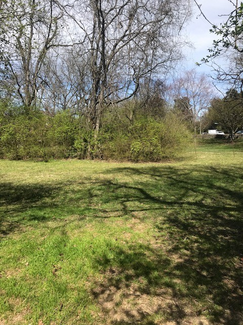 8284 Highway 100 Property Photo 1
