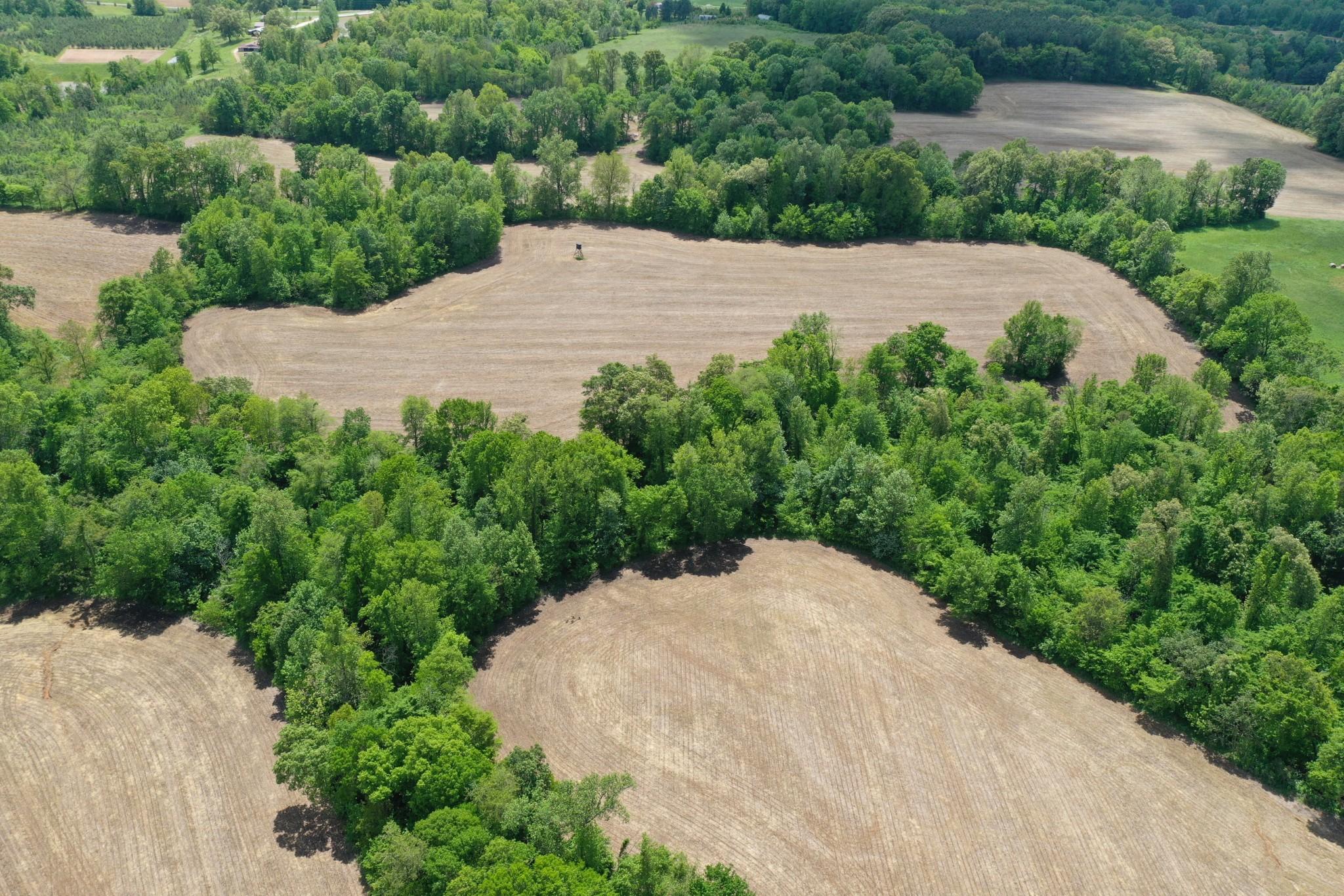 0 Briarpatch Lake Road Property Photo