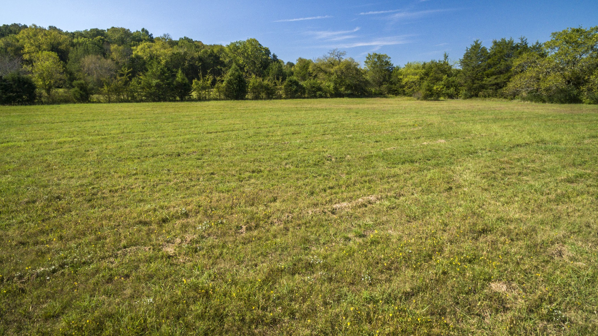 4640 Murfreesboro Rd Property Photo 3