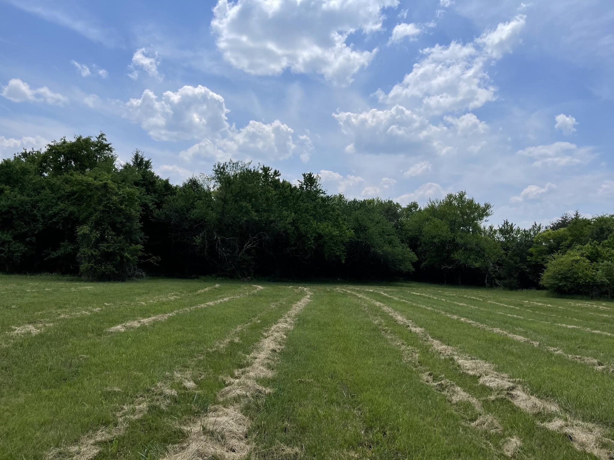 4640 Murfreesboro Rd Property Photo 8