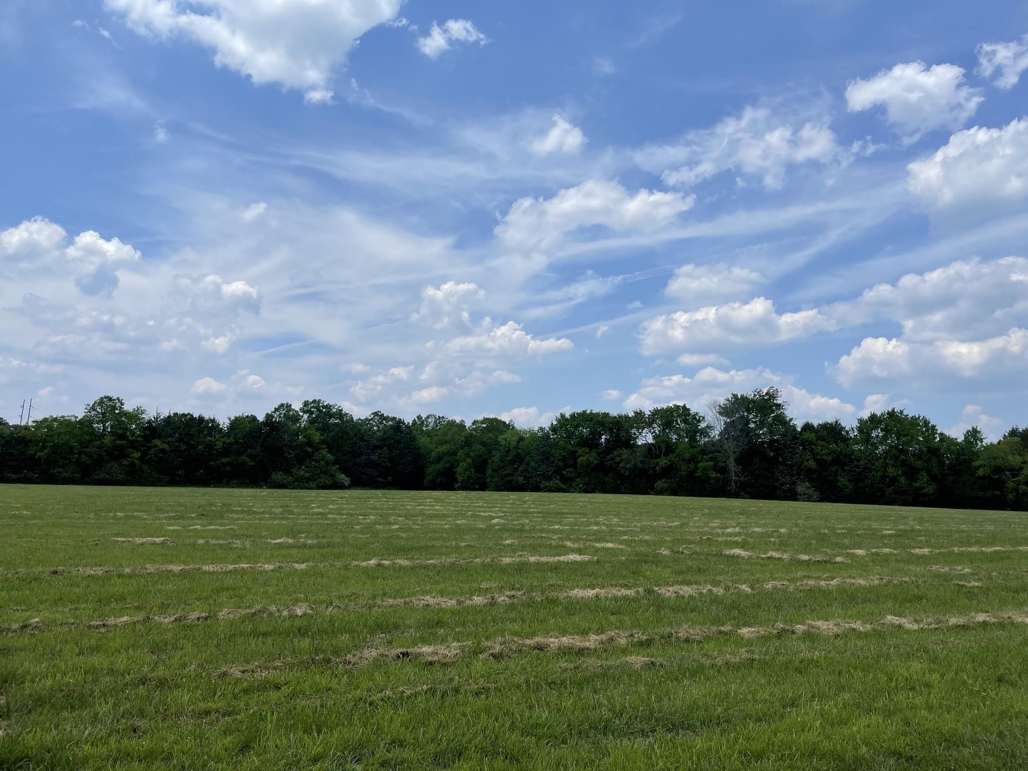 4640 Murfreesboro Rd Property Photo 10