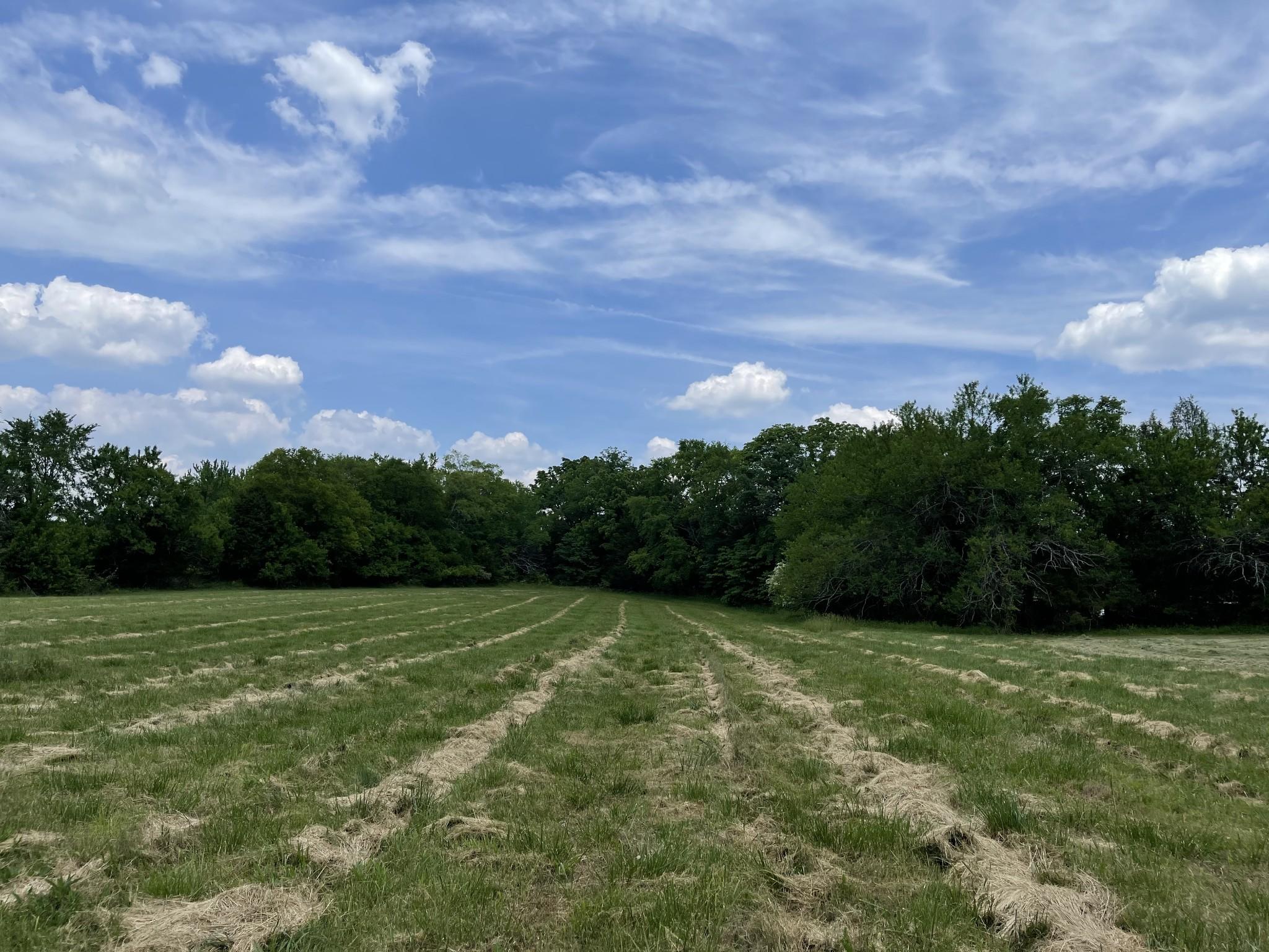4640 Murfreesboro Rd Property Photo 12