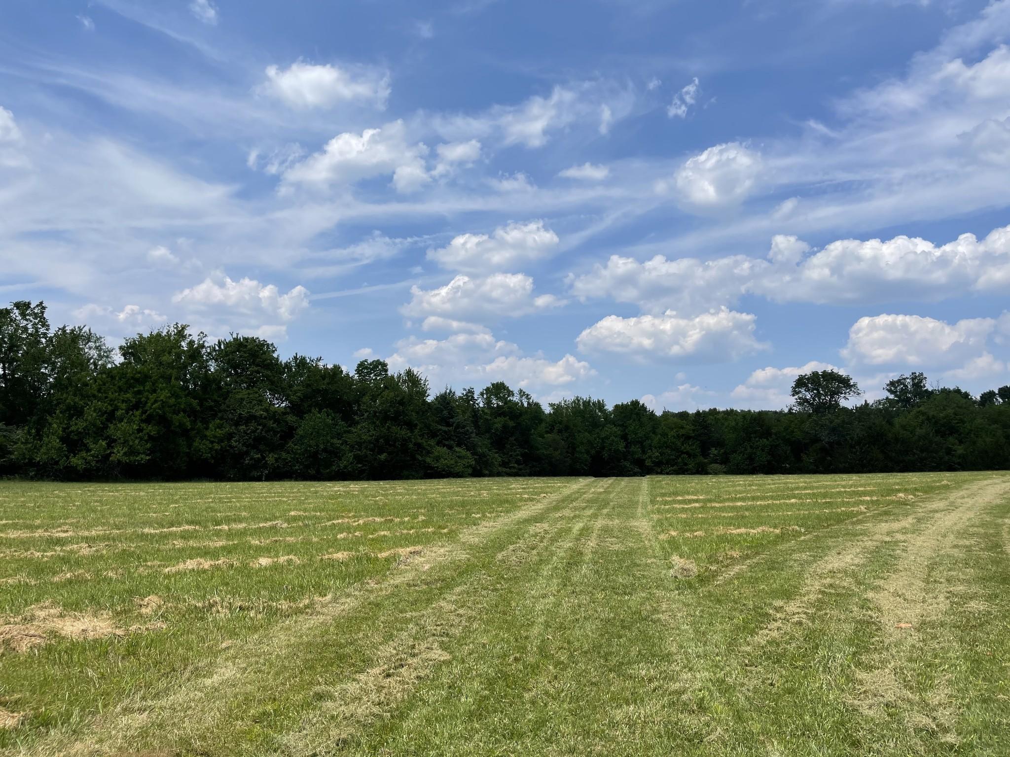 4640 Murfreesboro Rd Property Photo 14