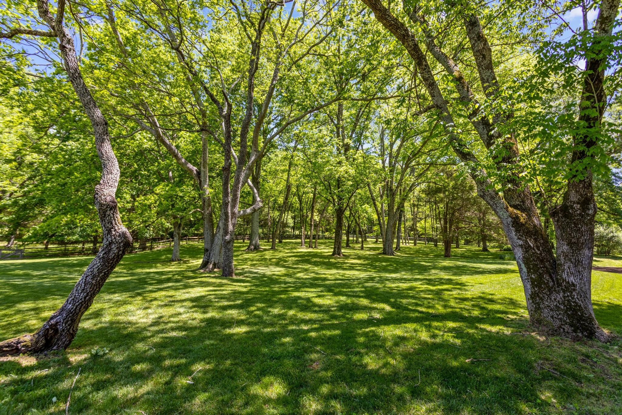 370 Vaughn Rd Property Photo 42