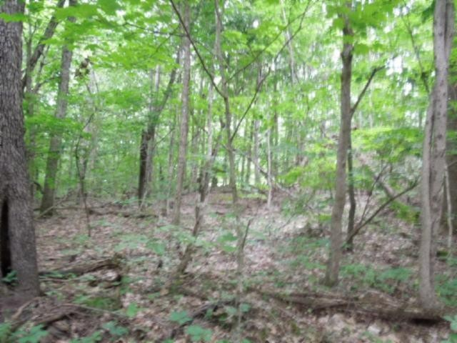 8 .40 Ac.star Point Road Property Photo