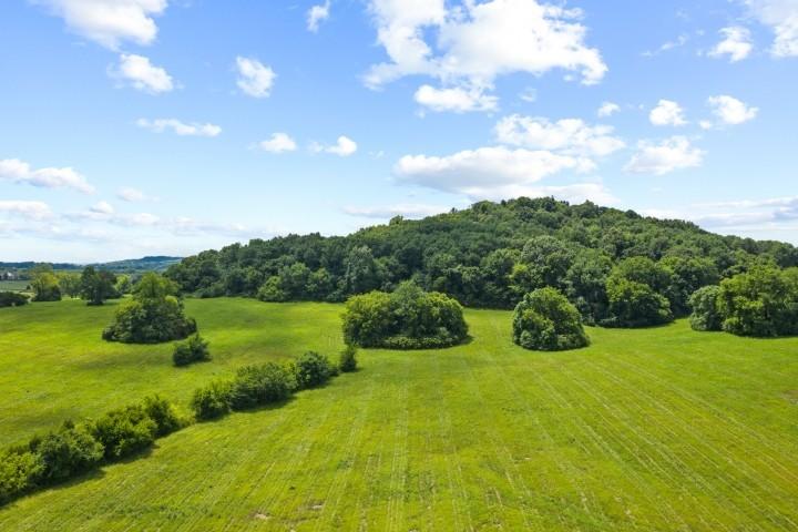 3076 Carters Creek Pk Property Photo 4