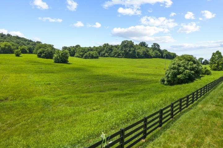 3076 Carters Creek Pk Property Photo 19