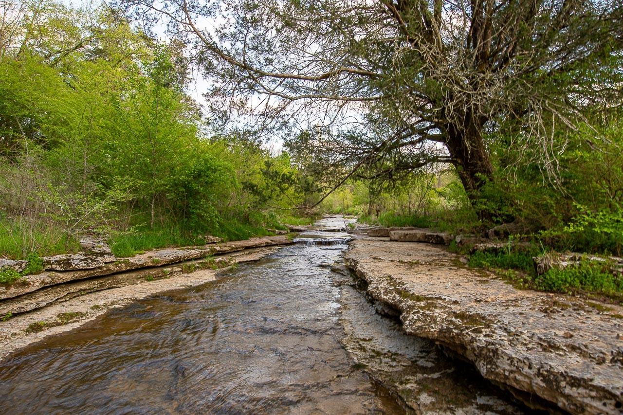 400 Bear Creek Pike Property Photo 4