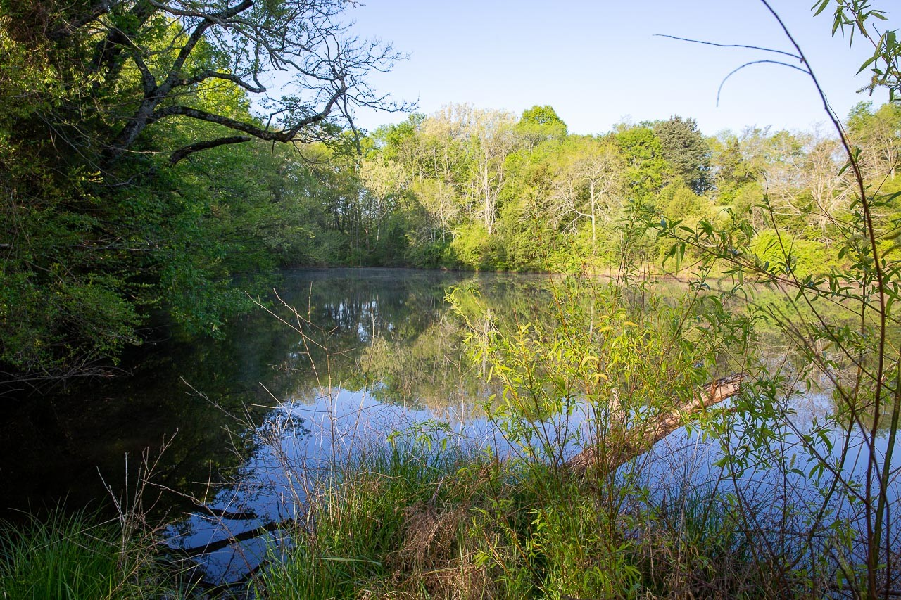400 Bear Creek Pike Property Photo 10