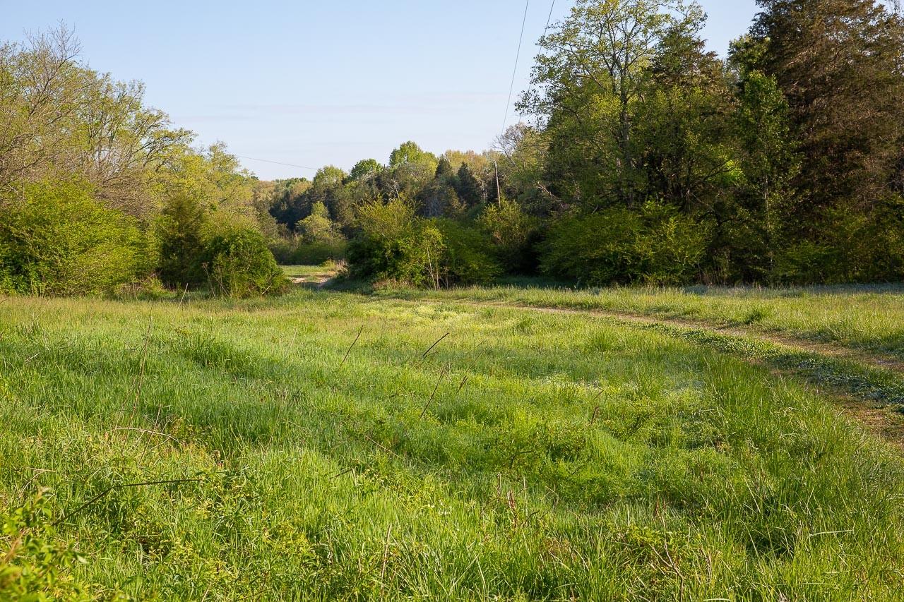 400 Bear Creek Pike Property Photo 14